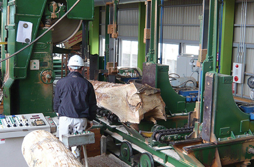 Sawing timber with twin bogie